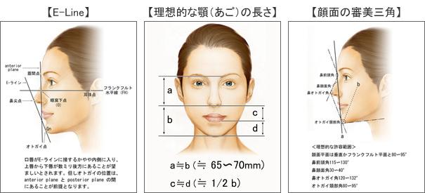 する 顎 整形 短く